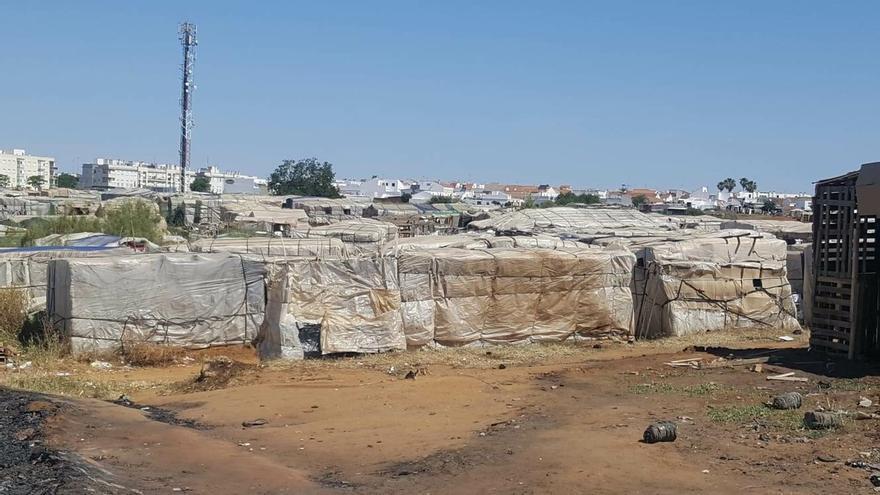 Subdelegación solicita ayuda de la UME para la desinfección preventiva de los asentamientos