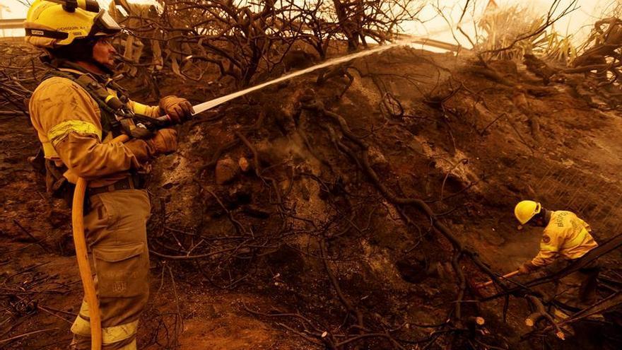 Bomberos sofocando uno de los conatos declarados en Santa Úrsula este domingo