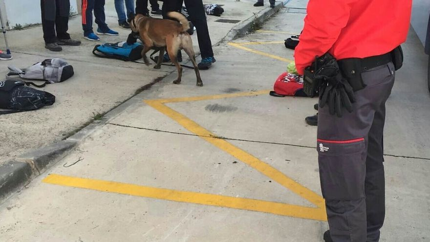 La Policía Foral organiza un dispositivo especial con motivo de las fiestas de Tafalla