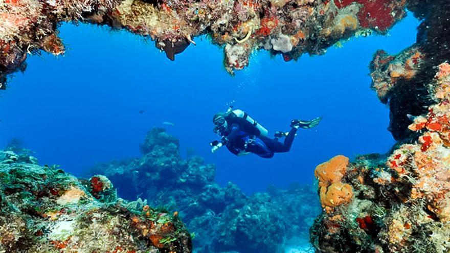 Buceadora en el Muro de Santa Rosa, arrecife del sur de Cozumel. VISIT MÉXICO