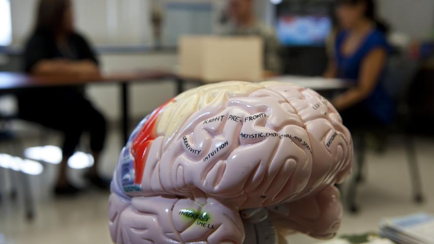También puede ayudar a mejorar las capacidades cognitivas de la gente sana