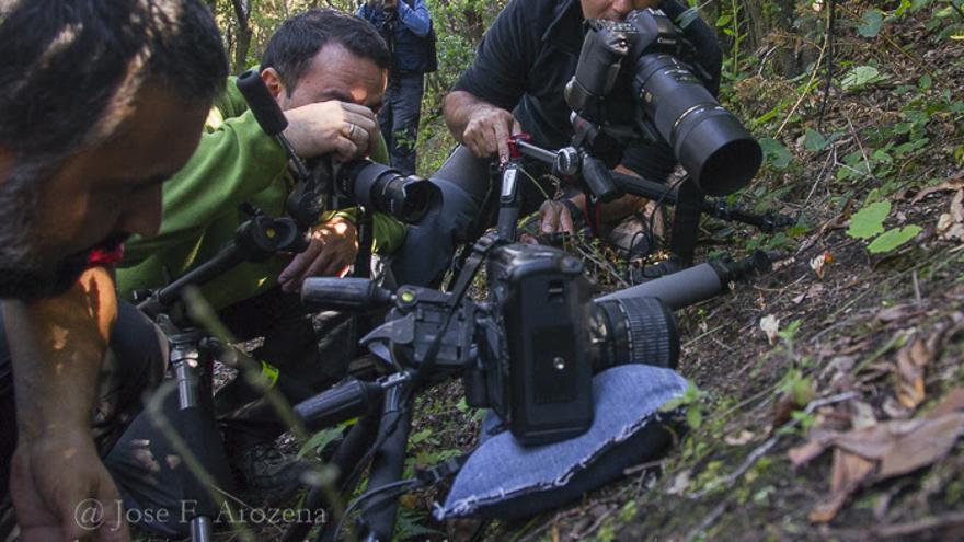 Los miembros de la Asociación @foto La Palma capturaron con sus cámaras unas sugerentes instantáneas. Foto: JOSÉ F. AROZENA.
