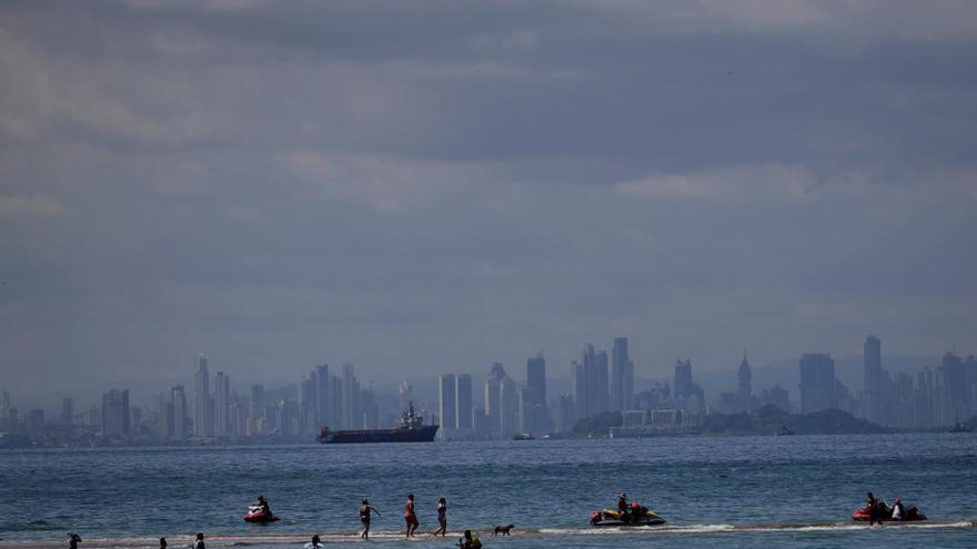 Los humedales costeros juegan un papel crítico en la fijación de CO2