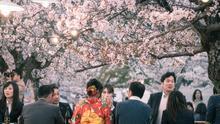 No era una moda pasajera: la falta de deseo sexual cala en la juventud de Japón