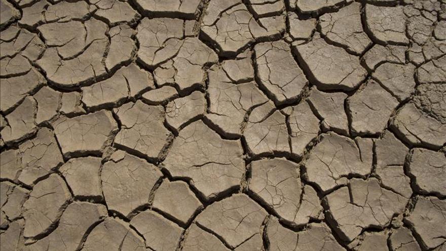 """Los países africanos piden """"dinero"""" y """"conocimientos"""" contra el cambio climático"""