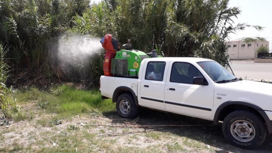 Imagen de una de las campañas de tratamiento contra los mosquitos en Borriana