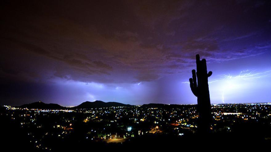 Phoenix. Ryan Cadby (CC).
