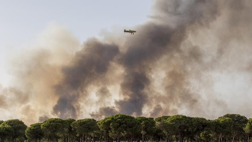 Labores de extinción del incendio en Doñana.