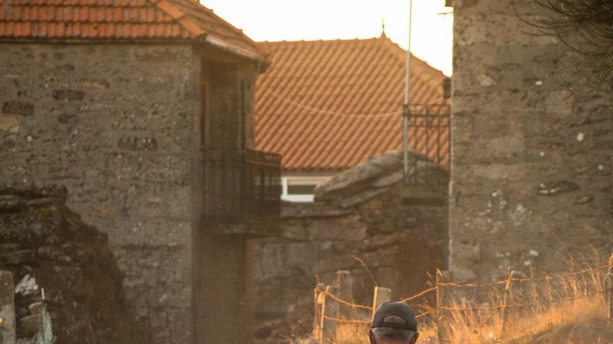 Pastor en la España rural