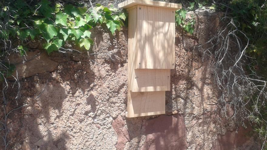 El ayuntamiento instala cajas refugio y nidos para potenciar la expansión de ambas especies depredadoras de insectos