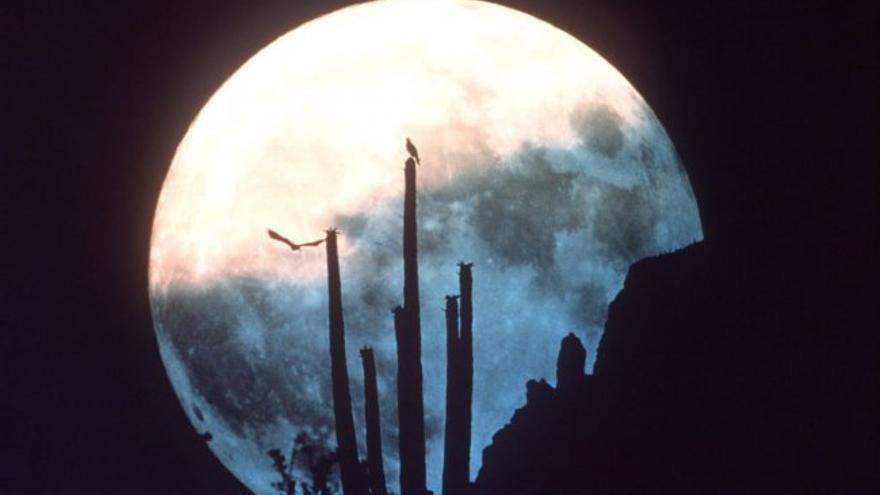 No se verá una luna más grande