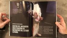 Infoanimal: magazine en papel sobre liberación animal