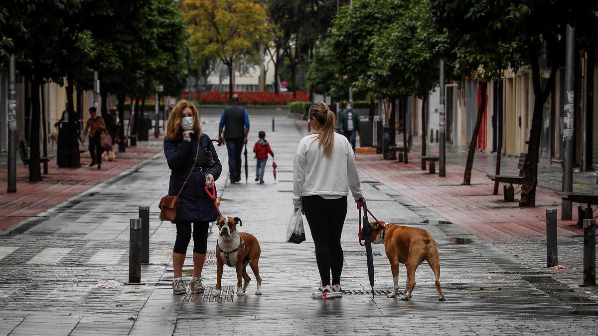 Personas paseando a sus perros.