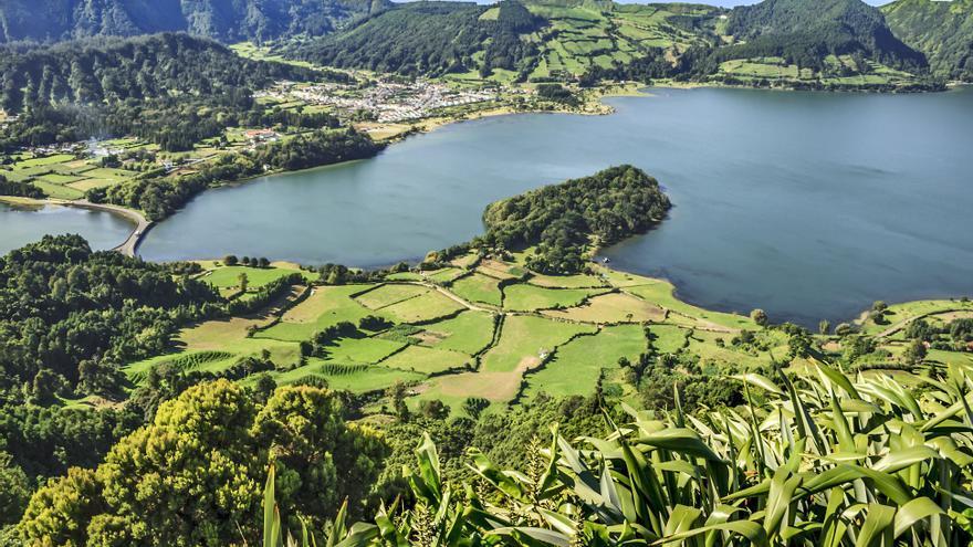 Vegetación exhuberante en las Azores
