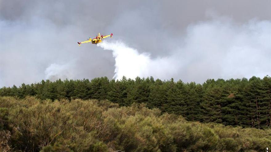 Controlado el incendio en la Sierra de Gredos, que afecta a 500 hectáreas