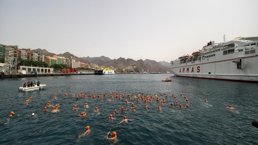 Los nadadores esperan la orden de salida este sábado