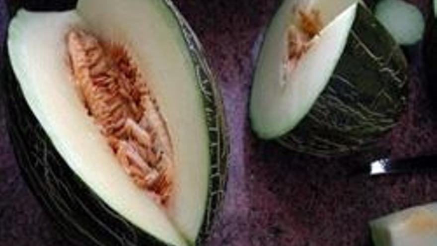 La superficie sembrada de melón en C-LM aumenta un 5% respecto a la campaña pasada, según Cooperativas Agro-alimentarias