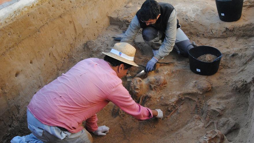 Trabajos de exhumación en Puerto Real (Cádiz).