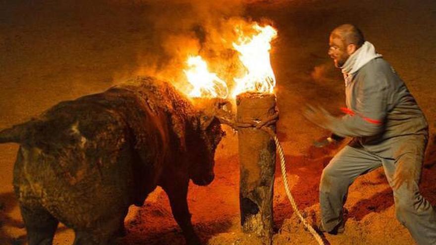 Polvorín fue torturado con fuego en Medinaceli durante el festejo 'Toro Jubilo 2015'.