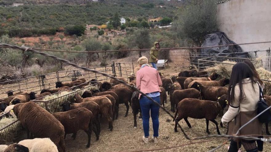 Extremadura dispone de materia prima ecológica, de calidad, con la que producir su propia moda