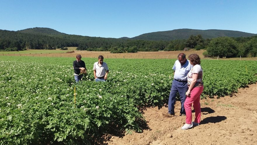 Intia dispone de 11 fincas dedicadas a la experimentación hortofrutícola y de cereal, y mantenimiento de razas autóctona