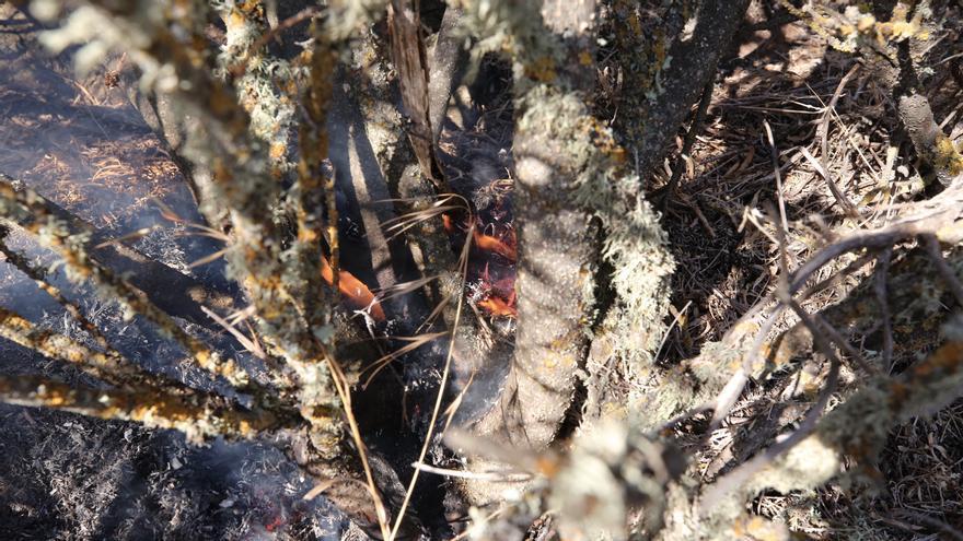 El incendio de Telde, desde los altos del pueblo de La Pasadilla.