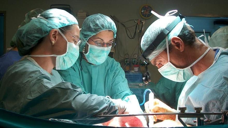 Andalucía realiza 761 trasplantes de órganos y más de 2.300 injertos de distintos tejidos en 2015