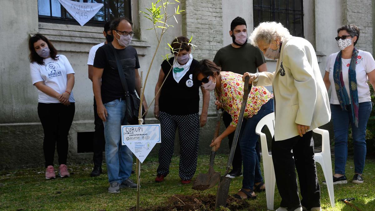 Organismos de derechos humanos plantaron árboles para recordar a las 30.000 víctimas de la dictadura. La foto es en la exESMA.
