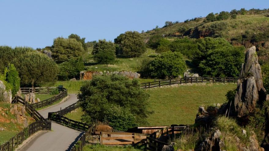 El Parque de la Naturaleza de Cabárceno, Premio Horeca 2019