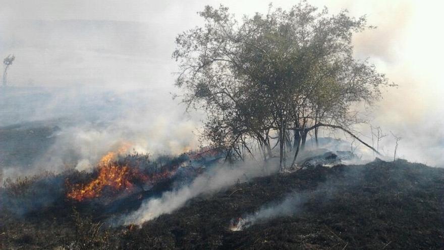 Dos incendios activos en Esles de Cayón y Estacas de Trueba