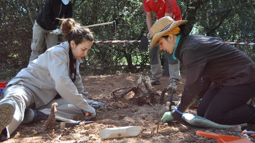Los alumnos que realizan la excavación en el monte de La Orbada (Salamanca). J.S.