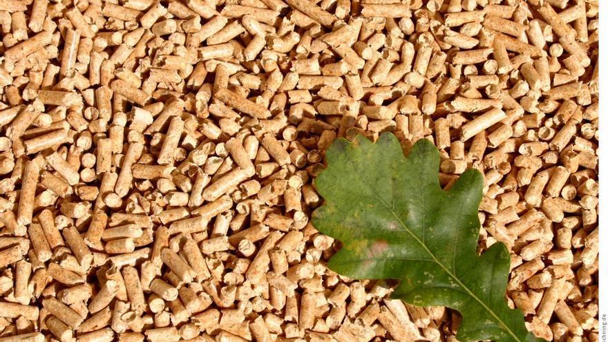 Pellets de biomasa forestal
