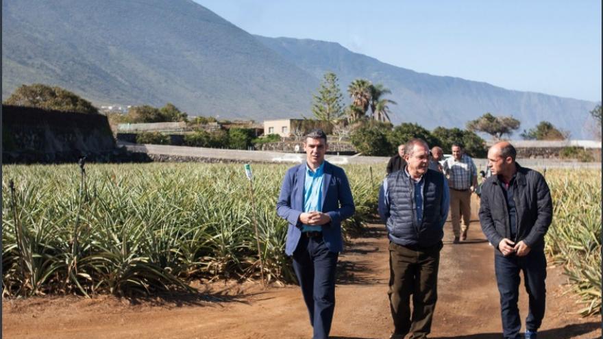 Consejero Agricultura Gobierno de Canarias visita El Hierro