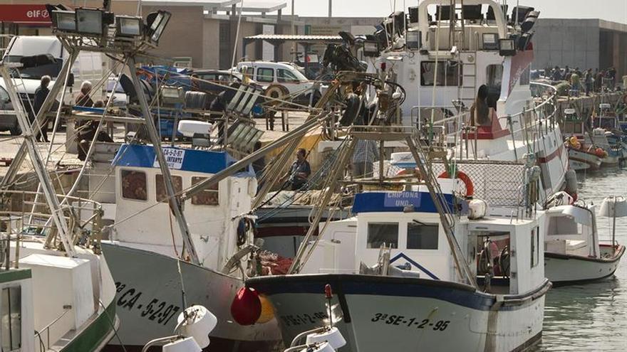 La flota pesquera española se redujo en 226 barcos en 2015