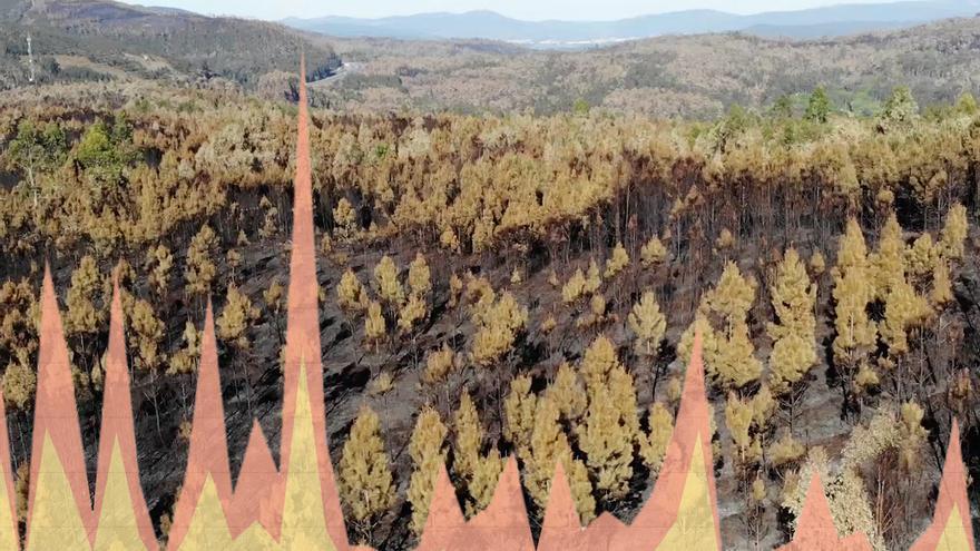 Área afectada por el fuego en Dodro y Rianxo y gráfico con la evolución anual de los incendios en Galicia