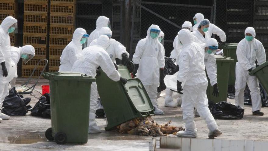 Ascienden a 104 los contagios por la gripe H7N9, con al menos 20 muertos