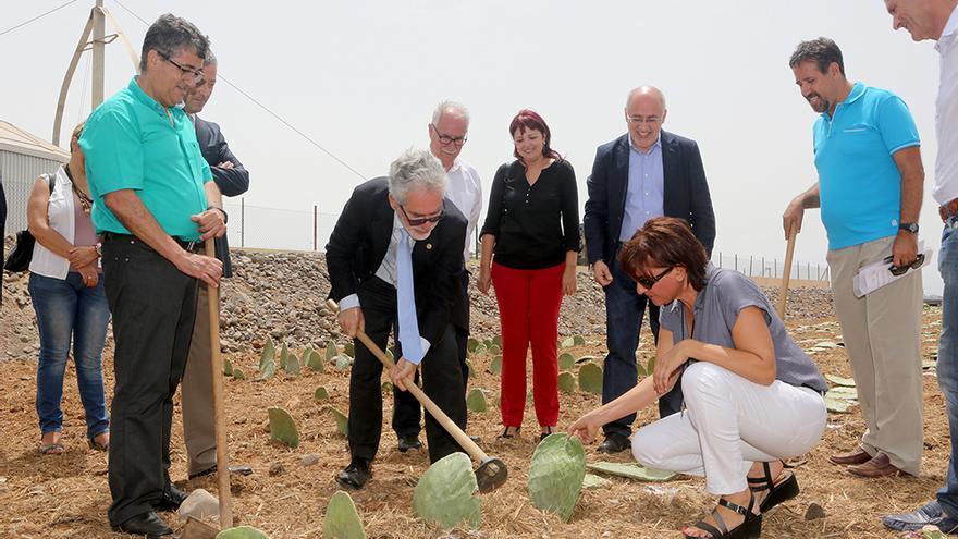 El rector la Universidad de Las Palmas de Gran Canaria planta una tunera mientras es observado. (Foto: Alejandro Ramos).