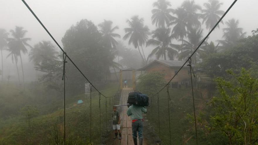 La Unesco alerta de la desforestación de una gran reserva de Nicaragua