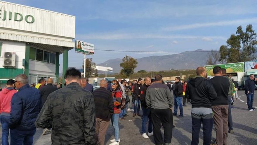 Agricultores cortan la A-7 en El Ejido para protestar por la situación del sector hortofrutícola