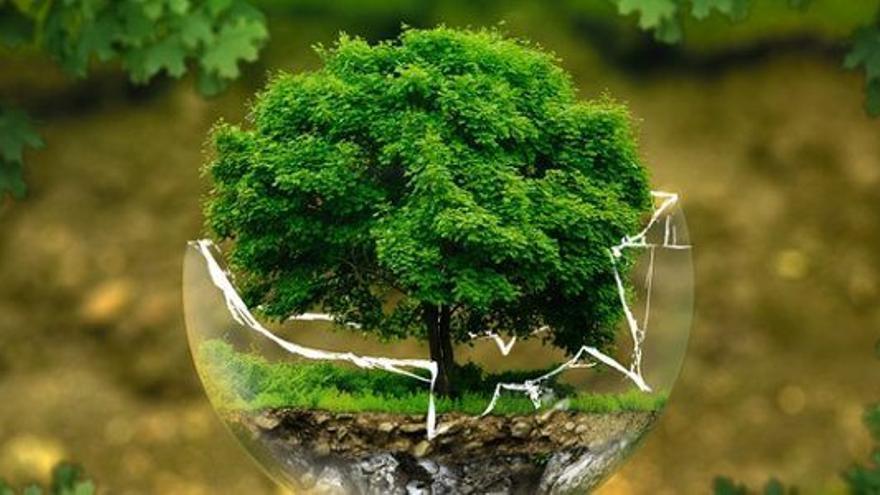 ¿Es importante que las administraciones registren su huella de carbono?