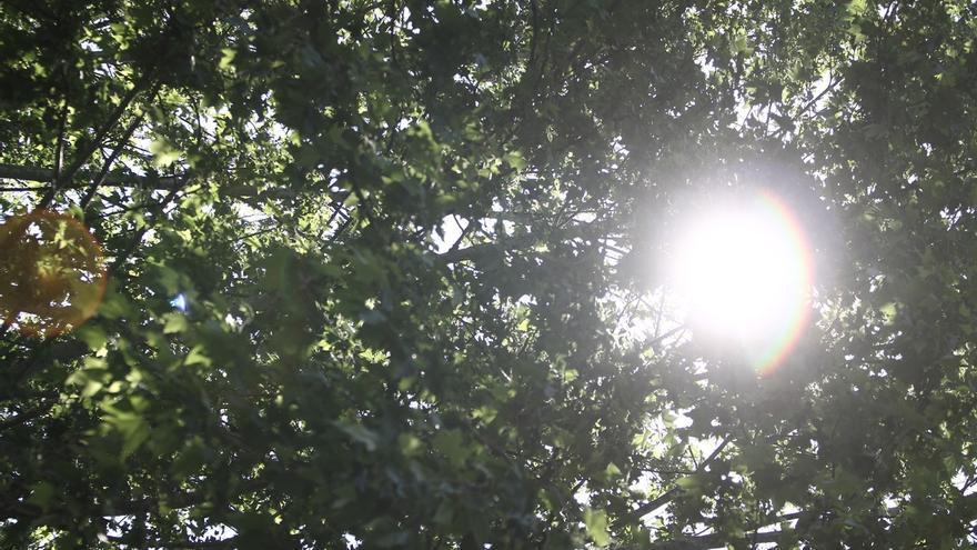 Comienza la subida de temperaturas este domingo en España