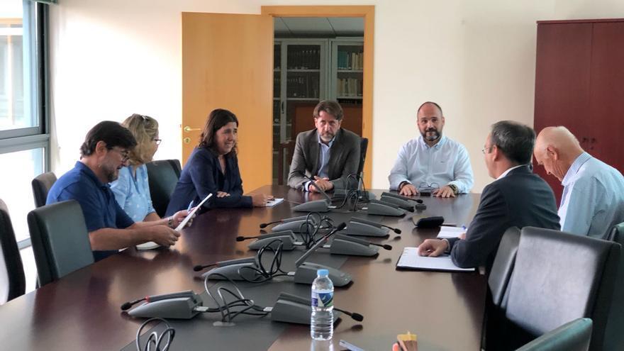 Reunión de representantes del Gobierno de Canarias y Cabildo de Tenerife con el Consejo de Europa