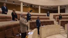Pleno extraordinario en el Parlamento de Cantabria por el coronavirus. | JOAQUÍN GÓMEZ SASTRE