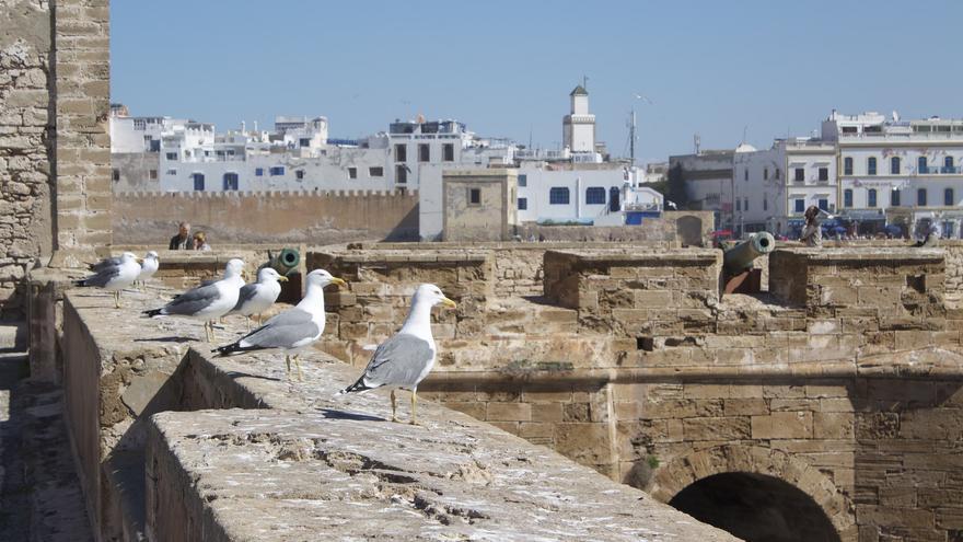 Azoteas y torres de la medina desde la muralla de Essaouira. Patrick Nouhailler