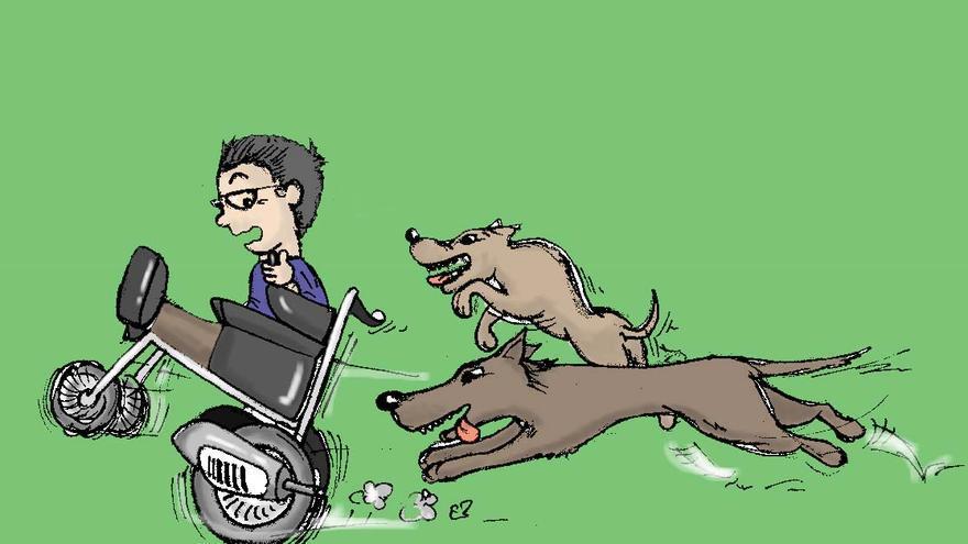 Retrón huye de perros
