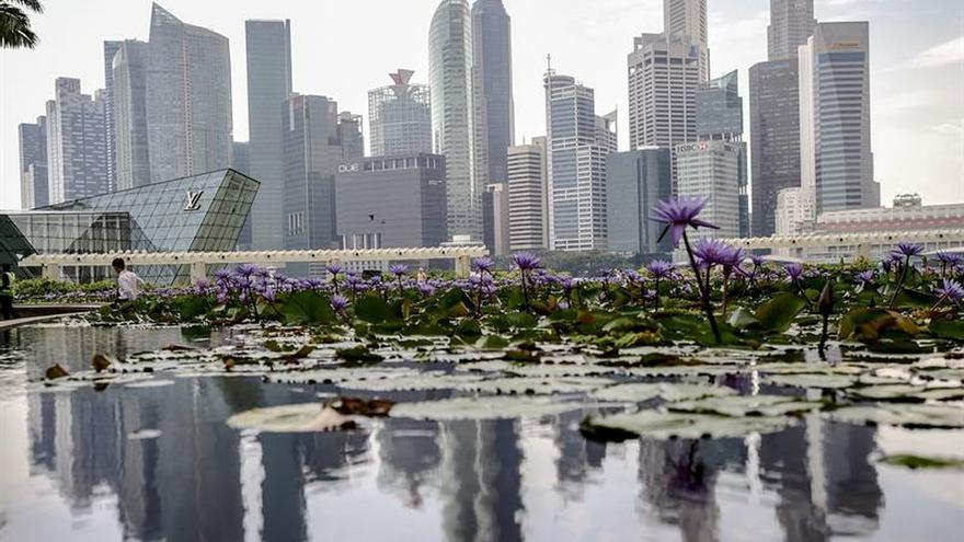 El crecimiento de Singapur cae hasta el 0,7 % en 2019