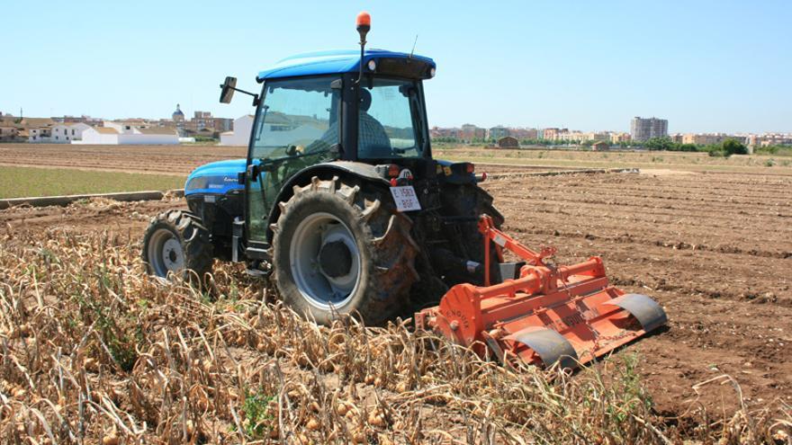 Un agricultor rotovatando el campo para destruir la cosecha de cebolla