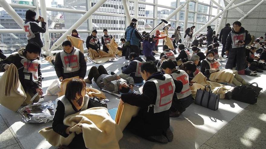 Un terremoto de 6,5 grados sacude el sureste de Tokio sin alerta de tsunami