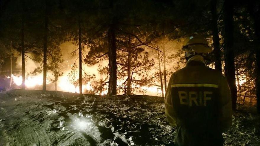 En la imagen, pinos en llamas en el incendio de La Palma. Foto: EFE