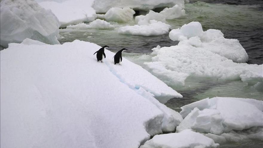 La capa de hielo antártica es más gruesa de lo que se pensaba, según un estudio